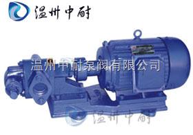 KCB/2CY系列帶安全閥齒輪泵
