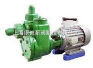 FPZ型耐腐蚀自吸离心泵/上海化工离心泵厂