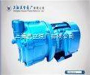 SZ型單級水環式真空泵