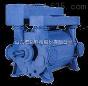 博山 淄博 博泵 真空泵SK SKF 2BE 2BVSK水环真空泵