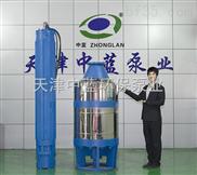 大功率高揚程礦用潛水泵