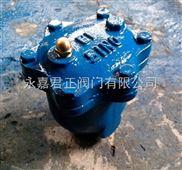 ARVX微量排氣閥 鑄鋼排氣閥