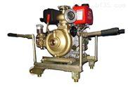 应急消防泵 船用消防泵