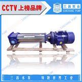 塔城多級鍋爐給水泵,DL型多級給水泵,三昌