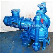 温州威王泵阀不锈钢DBY电动隔膜泵